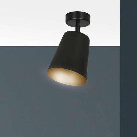 EMIBIG LIGHTING Stropné svietidlo Prism, 1-pl., čierne/zlaté